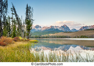 Mountain reflection with grasses in Idaho - Little redfish...