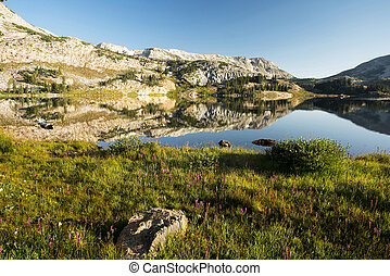 Mountain Reflections - Sugarloaf Mountain and Medicine Bow ...