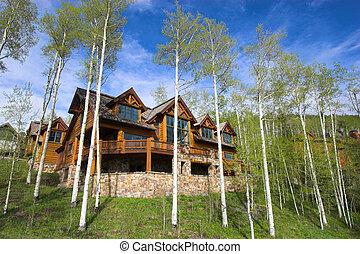 Mountain resort house