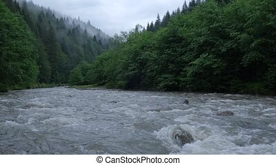 Mountain river against the background of a coniferous forest and a mountain landscape.