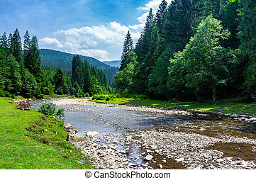 mountain river among the forest in summer. rocky shore and...