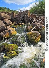 mountain river flow between stone