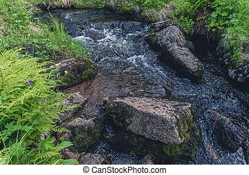Mountain river flow down