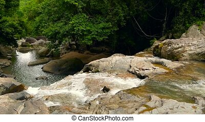 Mountain river flowing in rainforest. Endless meditative video, stream in tropical exotic jungle forest. Creek flow in deep woods among stones. Cascades of waterfall, greenery and trees. Seamless loop