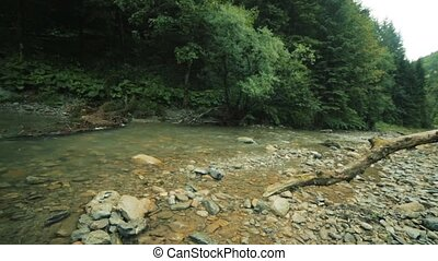 Mountain river flowing through the green forest. Stream in...