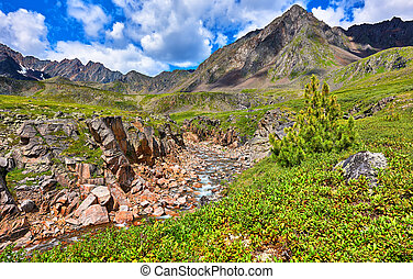 Mountain river in a canyon and green carpet of rhododendron