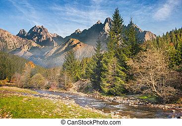 Mountain river in autumn forest - beautiful autumn...