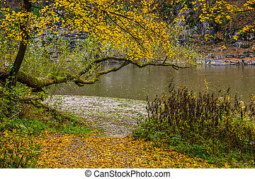 Mountain river in autumn forest
