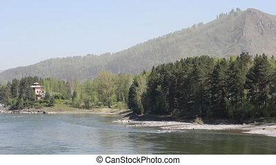 Mountain river in forest, Altai, Ru