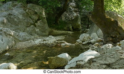 Mountain River in Greece - Small river in Epirus Mountains...