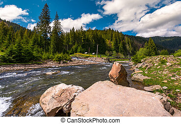 mountain river in springtime. beautiful scenery with spruce...