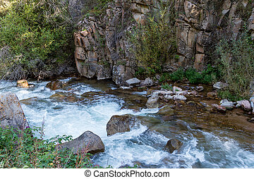 mountain river in the rocks