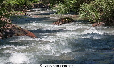 Mountain River in the Summer HD