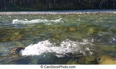 Mountain River in the summer