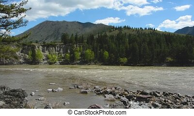 mountain river Katun. Altai Russia.