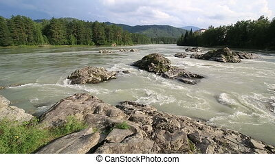 mountain river Katun - Mountain river Katun. Altai Krai....