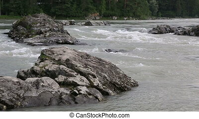 Mountain river Katun. - Thresholds mountain river Katun....