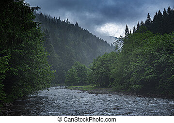 Mountain river on the background of a forest.