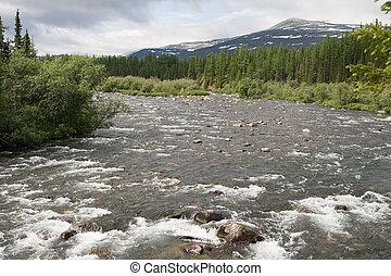 Mountain river - Rapid stream among rocks, Ural, northern ...