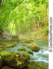 mountain river - River deep in mountain forest. Nature...
