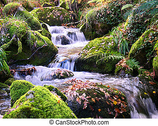 Mountain river - A mountain river with stream falling into...