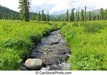 Mountain river valley landscape