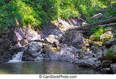 mountain river. water motion near the stones