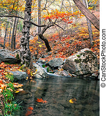 Mountain river with a waterfall in the autumn forest