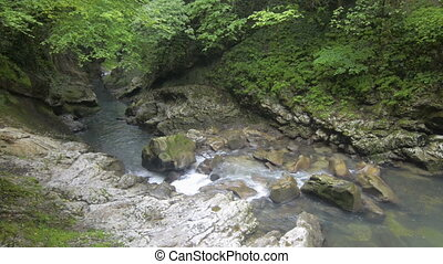 Mountain river with clean water in Caucasus mountain in...