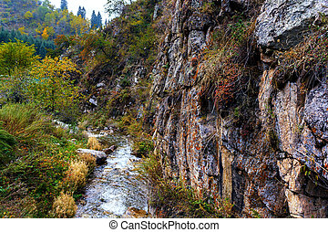 mountain river with rocks in the canyon. autumn mountains. green, yellow and red leaves