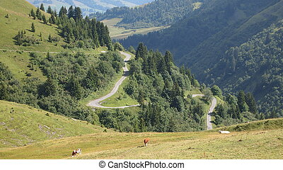 Mountain road in lace from the famous french Aravis pass, France, The Alps