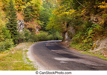 Mountain road in Parang, Romania - Beautiful mountain road...
