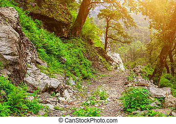 Mountain road in valley