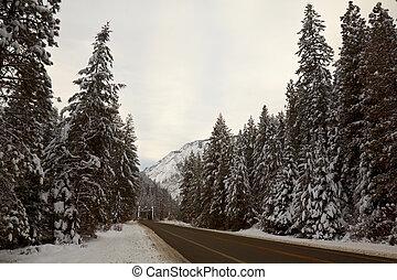 Mountain Road in Winter