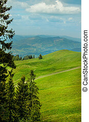 Mountain road landscape in summer - Green glade in a...