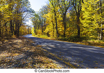 Mountain road through the autumn forest