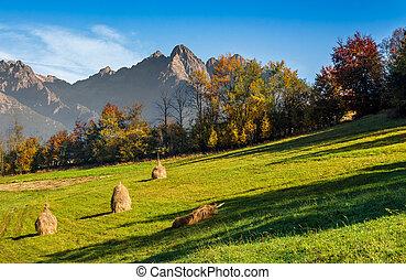 mountain rural area in autumn - Composite High Tatra...