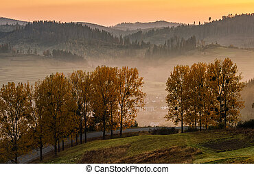 mountain rural area in autumn season. agricultural field in...