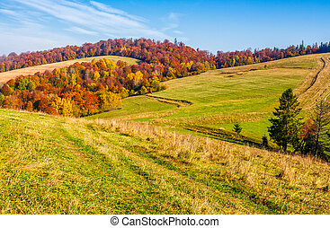 mountain rural area in late autumn season. agricultural...
