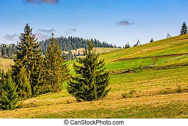 mountain rural area in late springtime - rural area...