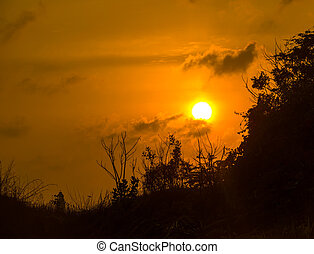 mountain silhouette with plants at sunset, India
