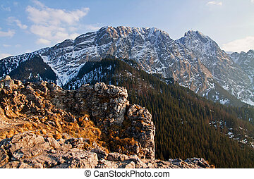 Mountain snowy landscape with rock
