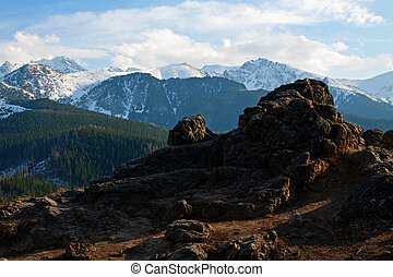 Mountain snowy landscape with rocks