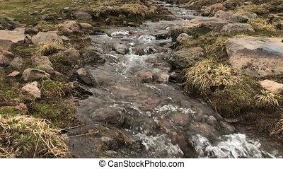 Mountain stream Armenia In slow motion
