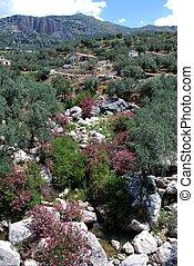 Mountain stream (Rio Sabar), Between Periana and Rio Gordo, Axarquia region, Malaga Province, Andalucia, Spain, Western Europe.