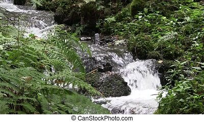 Mountain stream. - Fast flowing stream rushing down a...