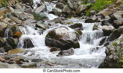 mountain stream flows on stones