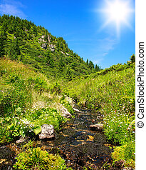 Mountain stream in blooming field on background of blue sky