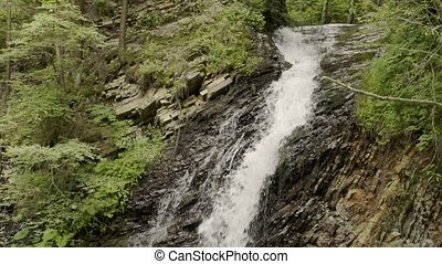 mountain stream in the forest - Mountain waterfall stream in...