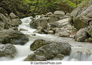 mountain stream in the woods Crimea, Ukraine